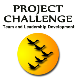 Project Challenge